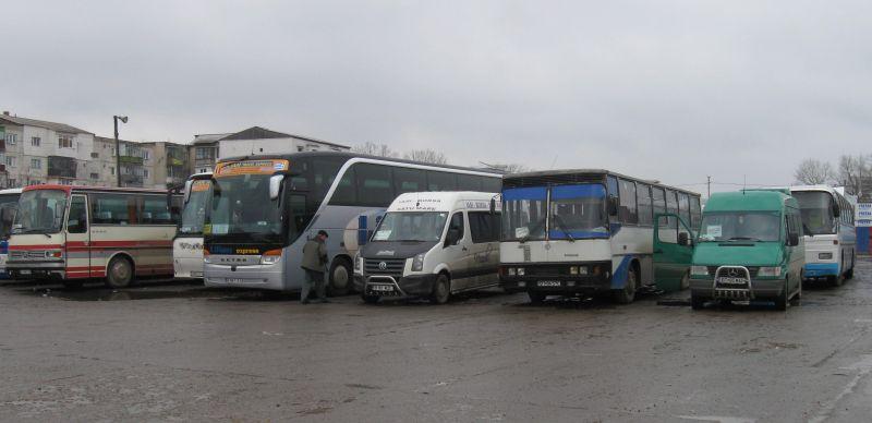 Autobuze (2)