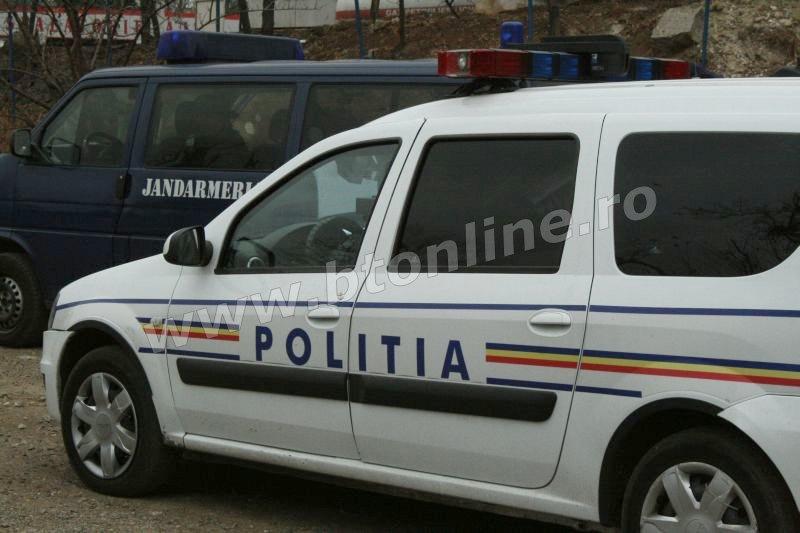 politie, jandarmi