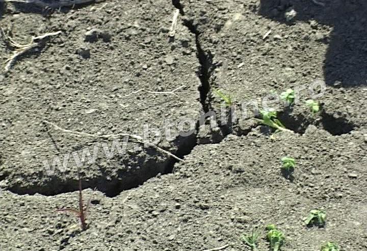 seceta teren agricol