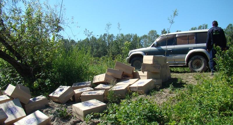 tigari jeep paltinis