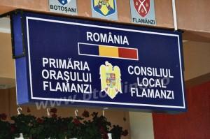 flamanzi, lucrari 10august (7)