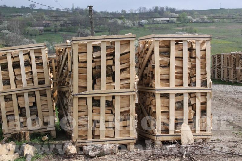 pomirla, lemn de foc (7)