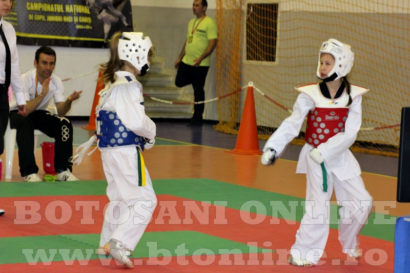 taekwondo Botosani Open (10)