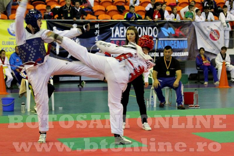 taekwondo Botosani Open (12)