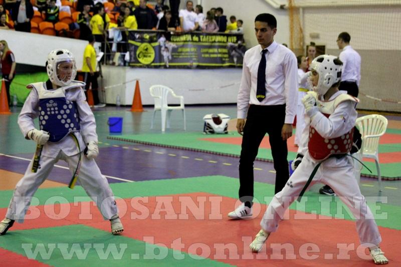 taekwondo Botosani Open (15)