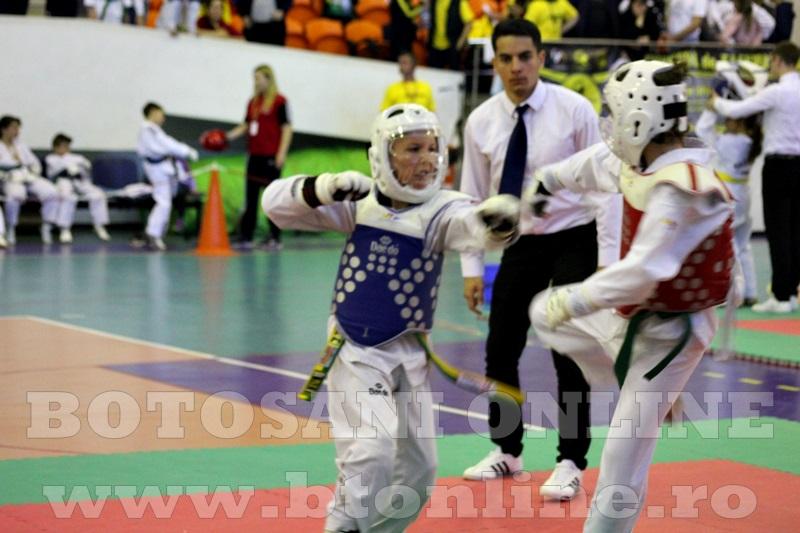 taekwondo Botosani Open (16)