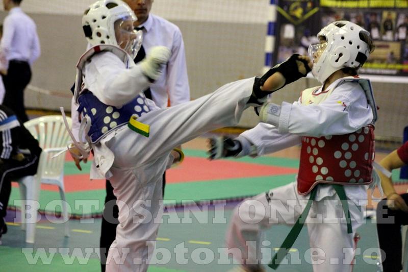 taekwondo Botosani Open (18)