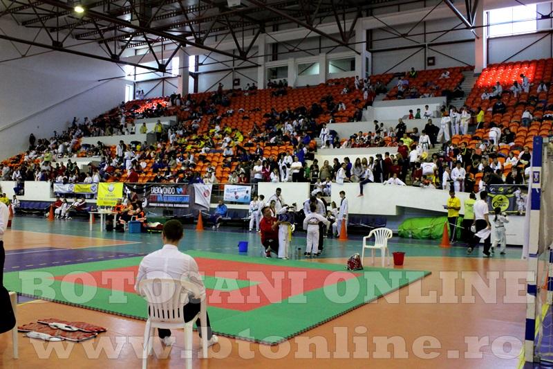 taekwondo Botosani Open (3)