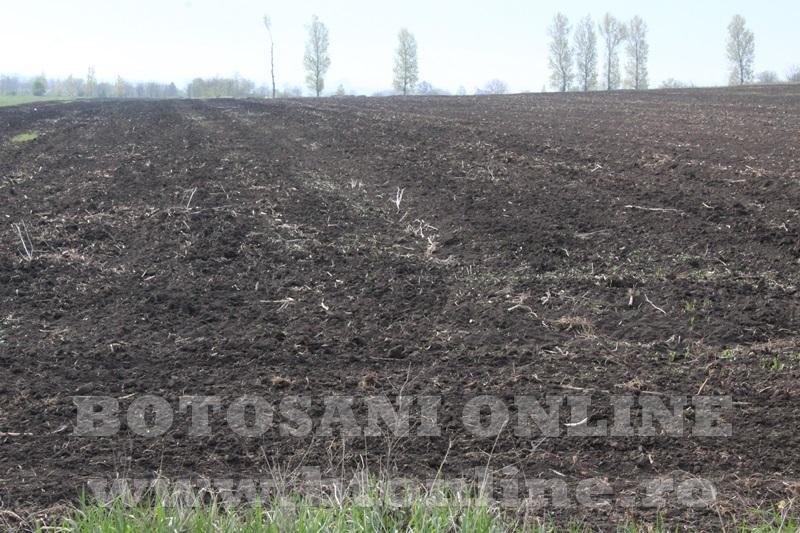 teren agricol doru andrici