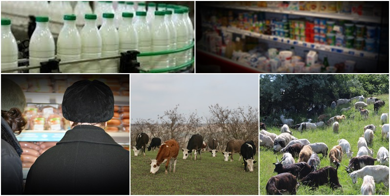 lapte, procesatori, fermieri, cumparatori