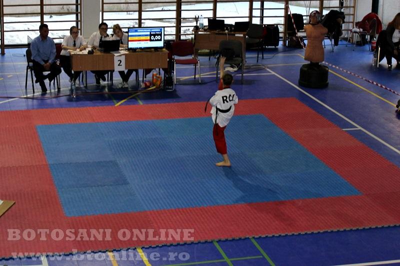 taekwondo (4)