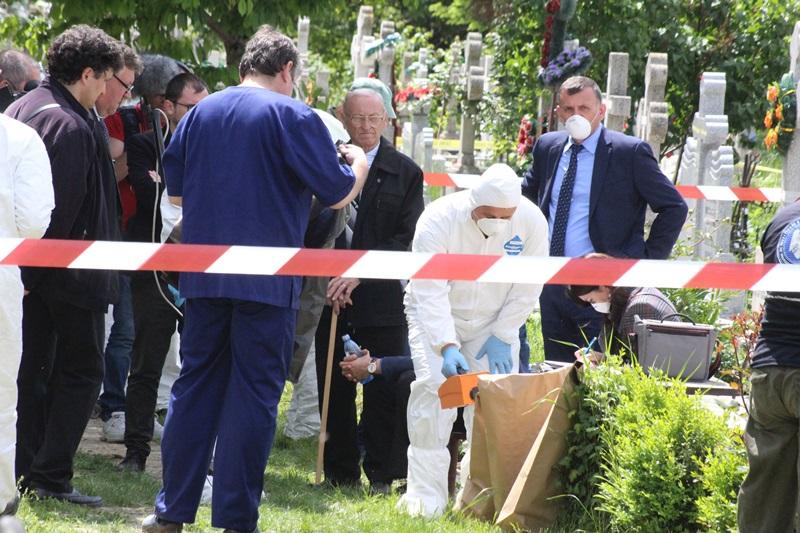 deshumare mugur calinescu (33)