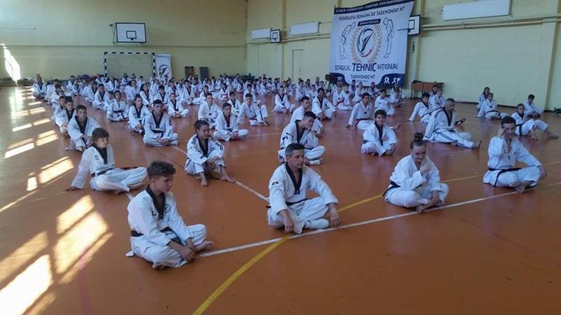 real taekwondo