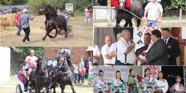 Concursuri cu cai de 10.000 de euro şi spectacol cu artişti din trei ţări la Zilele comunei Păltiniş GALERIE FOTO&VIDEO