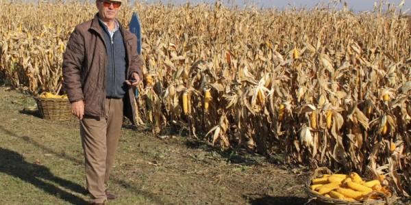 PREMIERĂ. Un fermier botoşănean a cumpărat aproape 1000 de hectare de teren de la un cetăţean danez, în zona Hăneşti