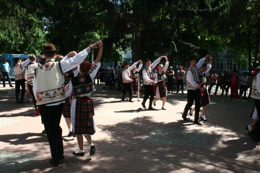 bucecea festival1