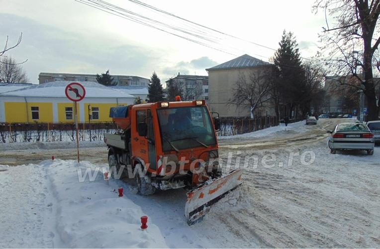 deszapezire 2015 municipiul botosani (4)