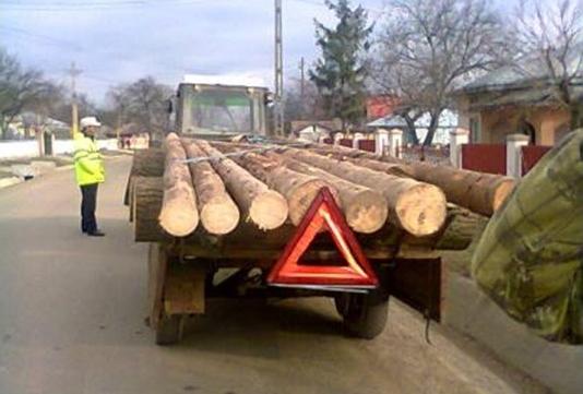 politisti lemne