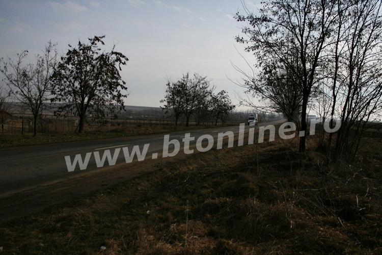 teren zona rediu (2)