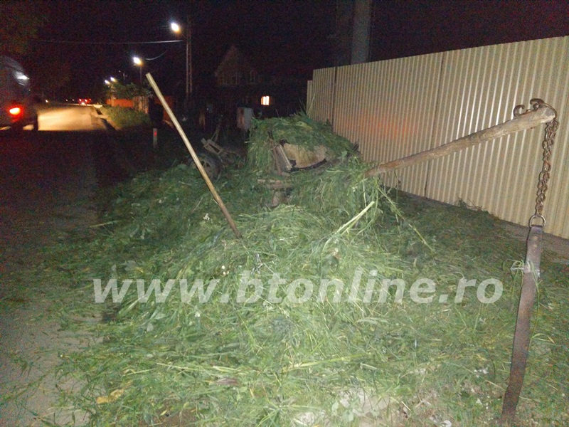 accident oraseni deal  (4)