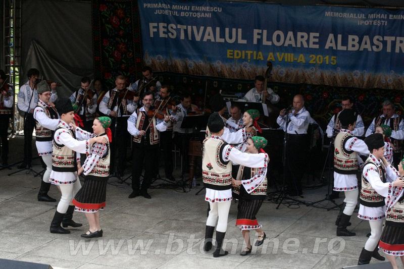 festival floare albastra 2015, ipotesti10