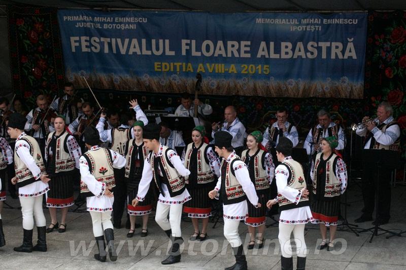 festival floare albastra 2015, ipotesti12