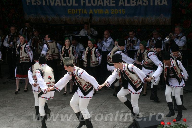 festival floare albastra 2015, ipotesti13