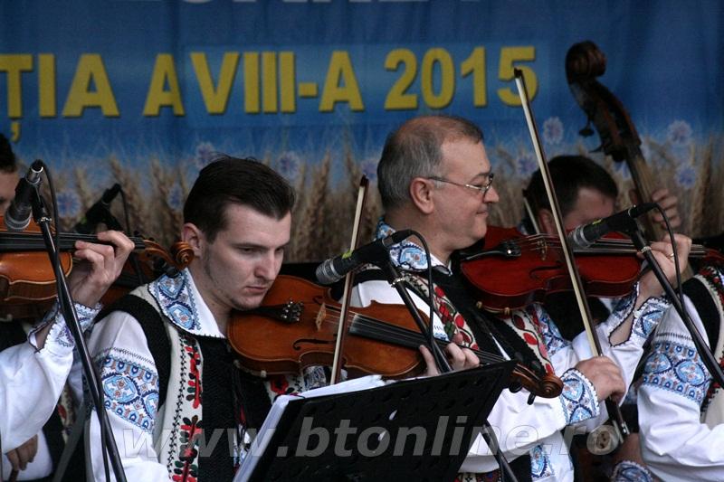 festival floare albastra 2015, ipotesti15