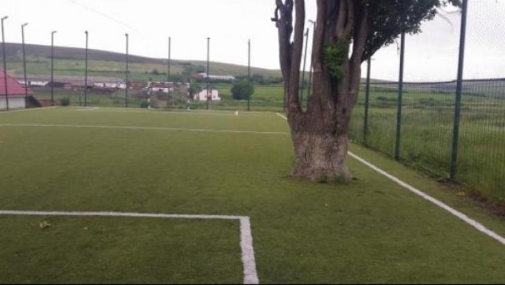 copac teren fotbal foto realitatea