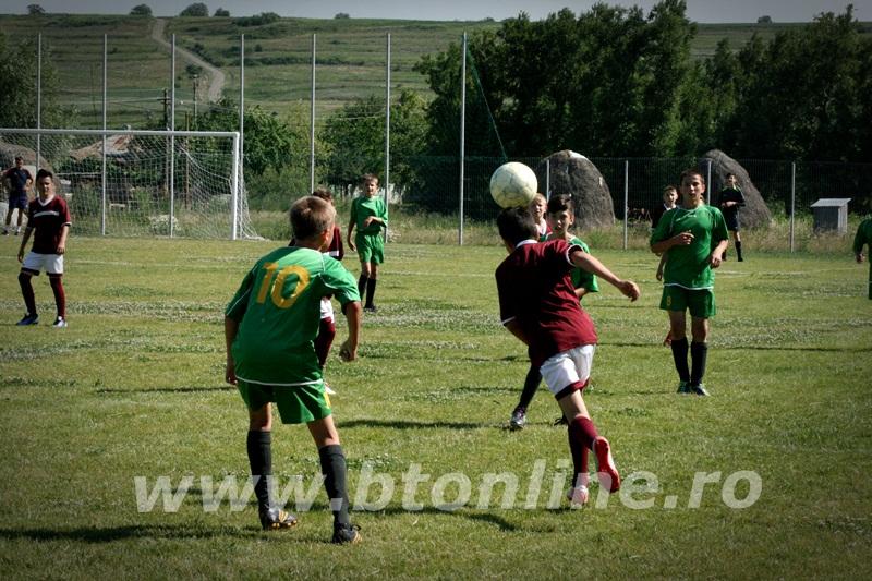 cupa ecologistul la fotbal (26)