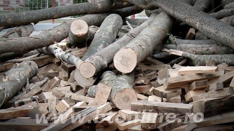 camion cu lemne rasturnat (2)