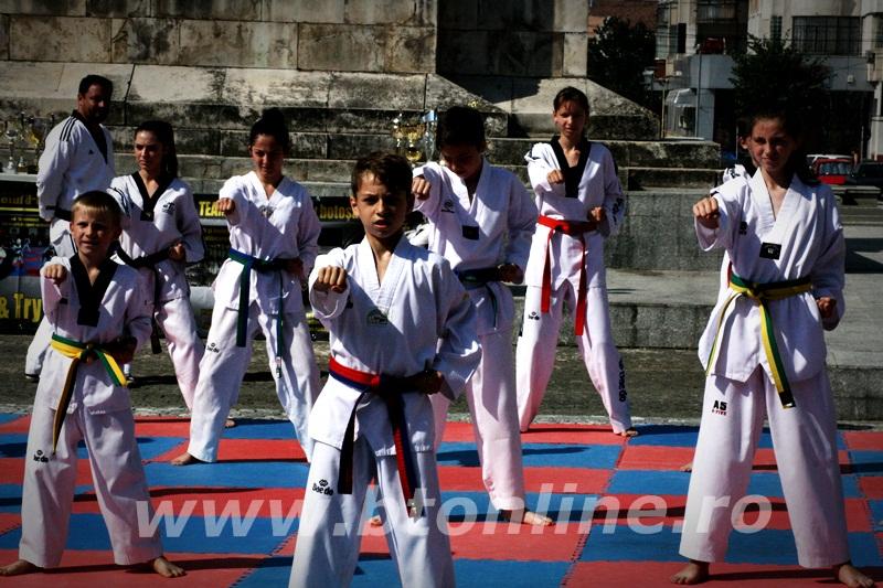 taekwondo (12)