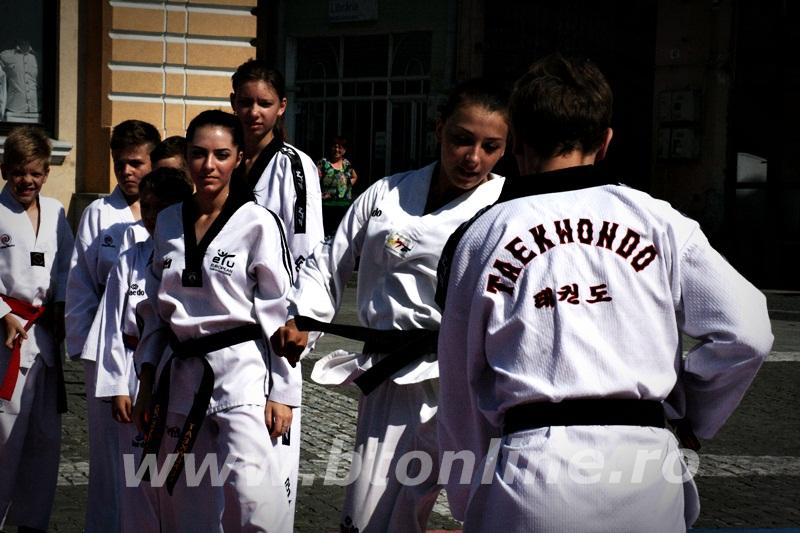 taekwondo (20)