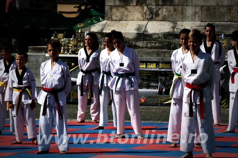 taekwondo (9)