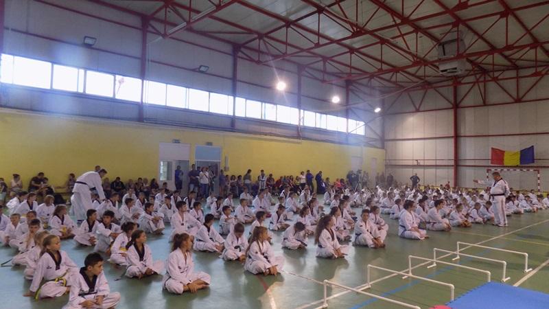 real taekwondo eforie