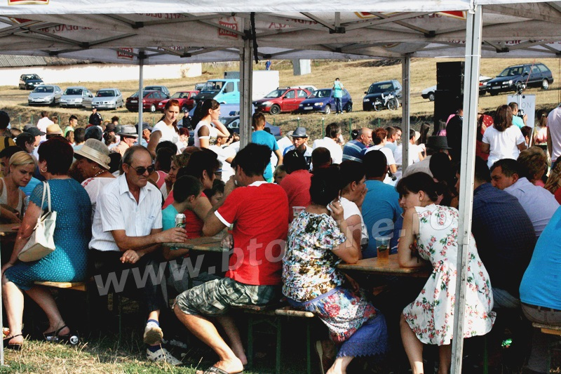 vlasinesti, zilele comunei (1)