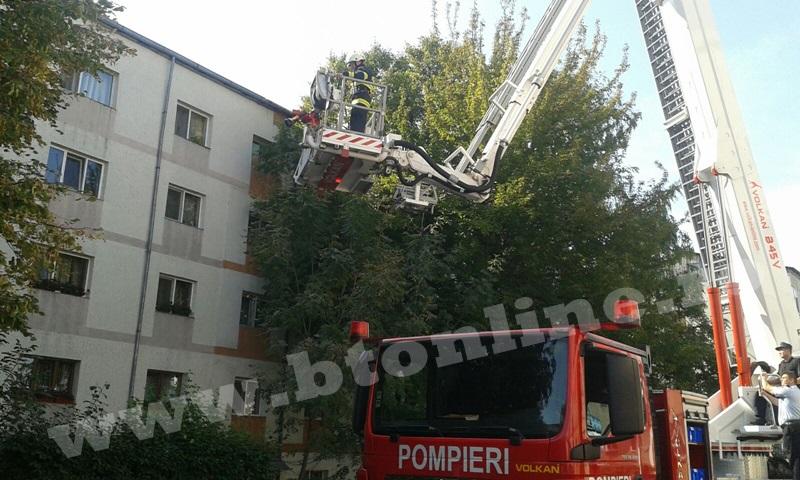 interventie pompieri aleea tiberiu crudu (13)