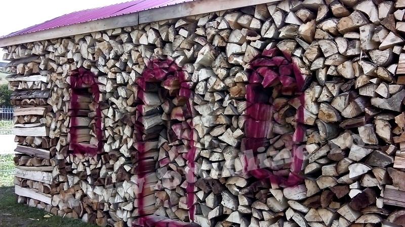 atelier despicat lemn de foc (3)
