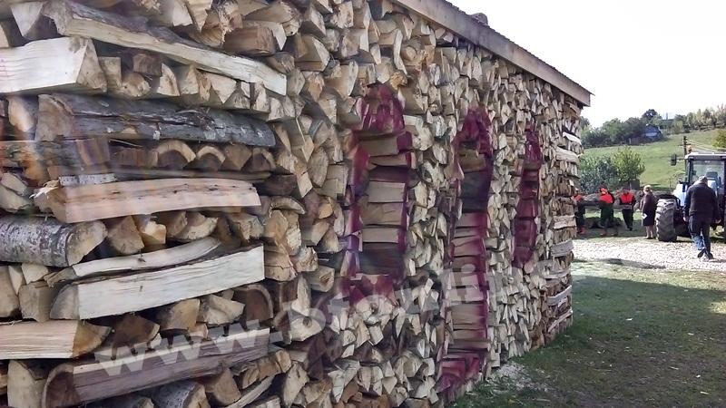 atelier despicat lemn de foc (4)