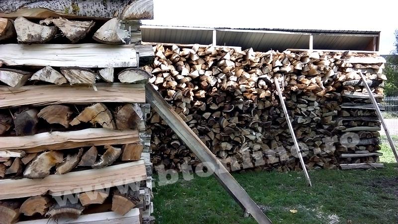 atelier despicat lemn de foc (5)