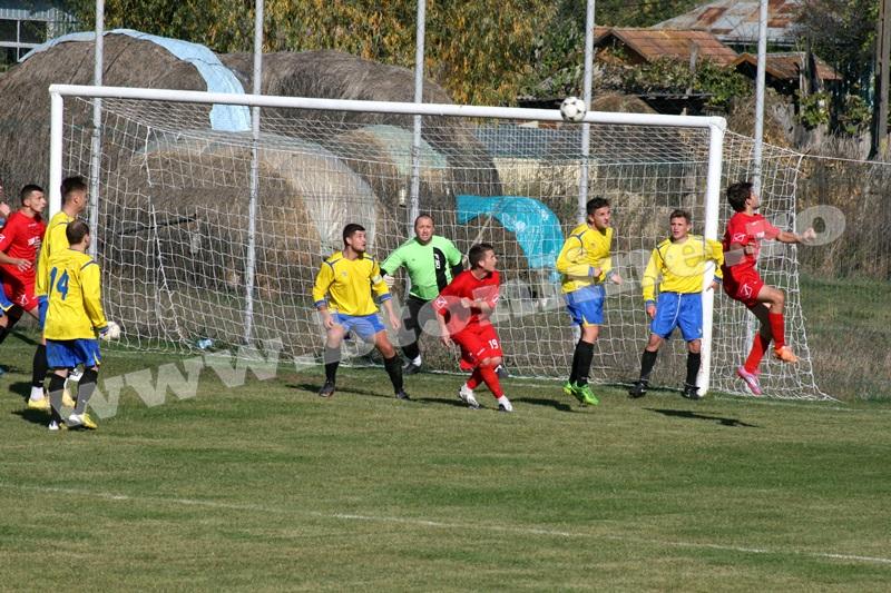luceafarul - rogojesti13
