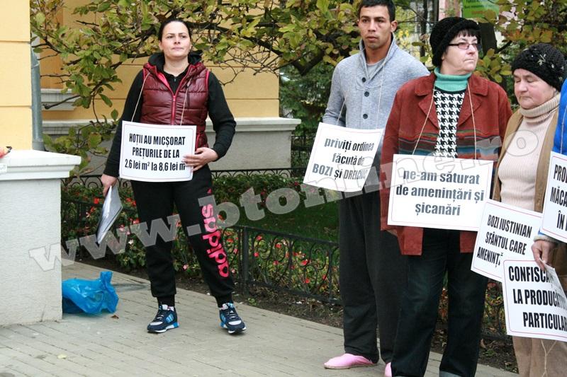 protest primaria Botosani (1)