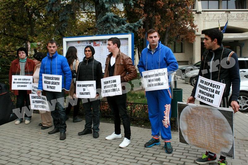 protest primaria Botosani (3)