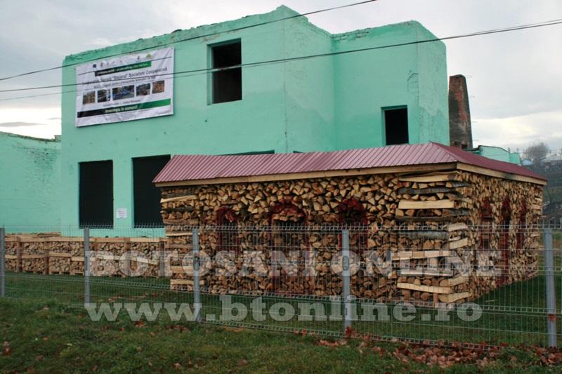 Pomarla, proiect economie sociala, lemn de foc (14)