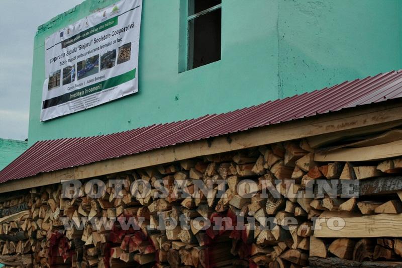 Pomarla, proiect economie sociala, lemn de foc (19)