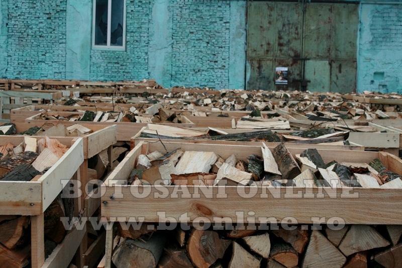 Pomarla, proiect economie sociala, lemn de foc (20)