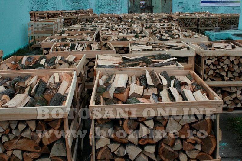 Pomarla, proiect economie sociala, lemn de foc (22)