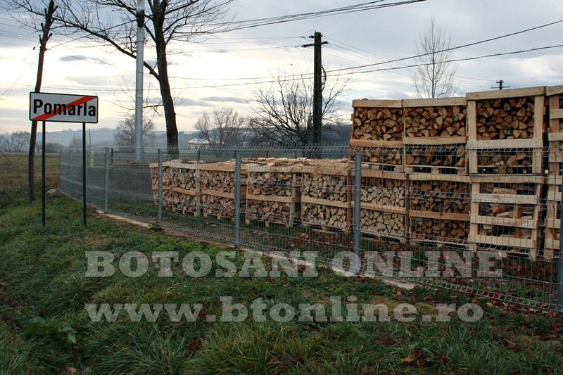 Pomarla, proiect economie sociala, lemn de foc (25)