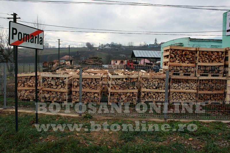 Pomarla, proiect economie sociala, lemn de foc (27)