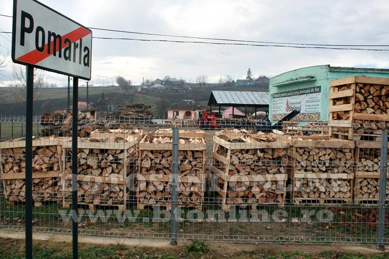 Pomarla, proiect economie sociala, lemn de foc (31)